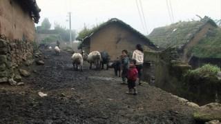 <i> San zimei/ Três Irmãs</i>, o encontro com vidas no limite do possível: entre batatas e porcos, uma aldeia montanhosa do Sul da China