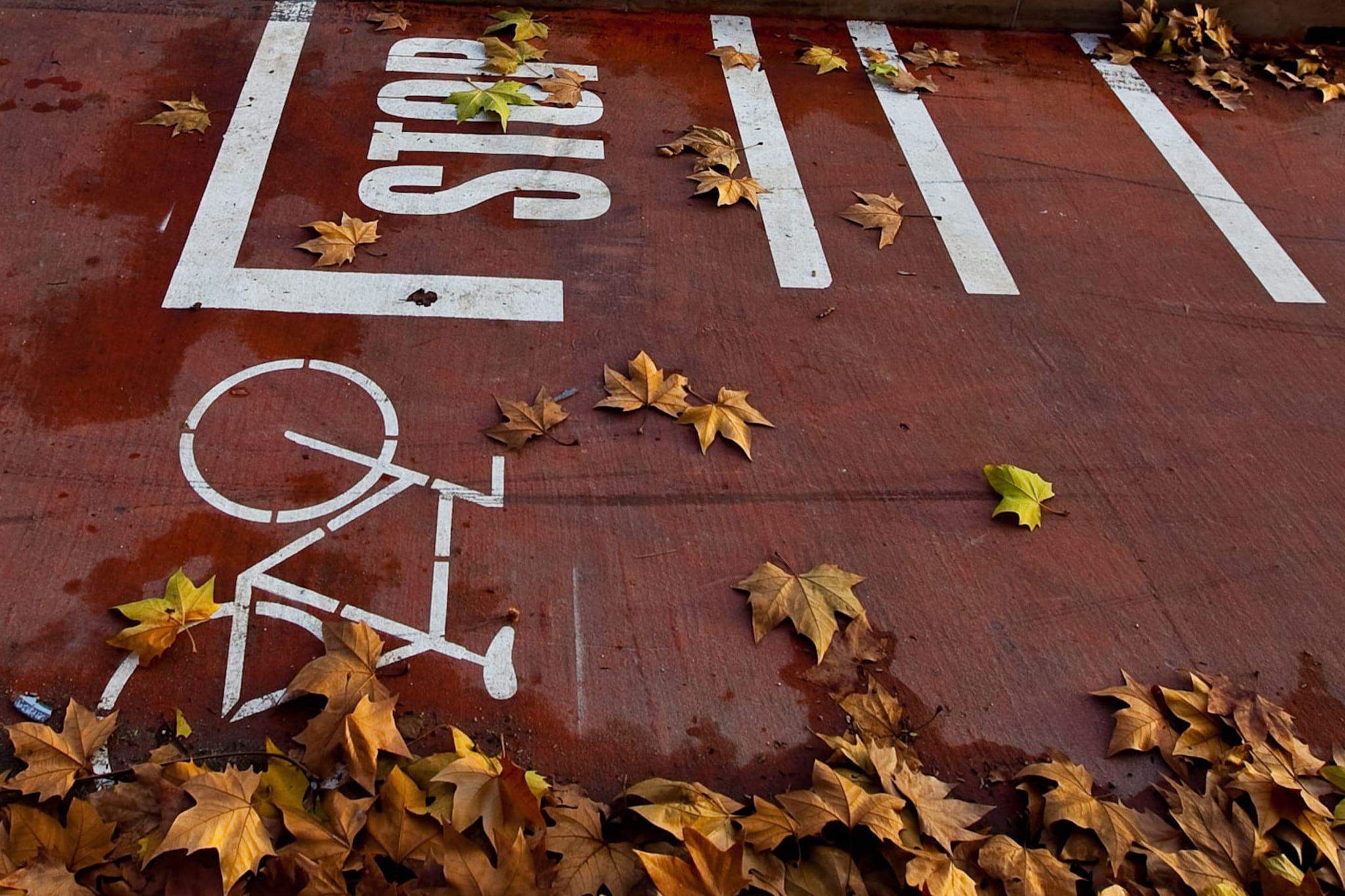 PÚBLICO - Depois do burro e do Ferrari, as bicicletas. PSD-Lisboa volta a gerar polémica