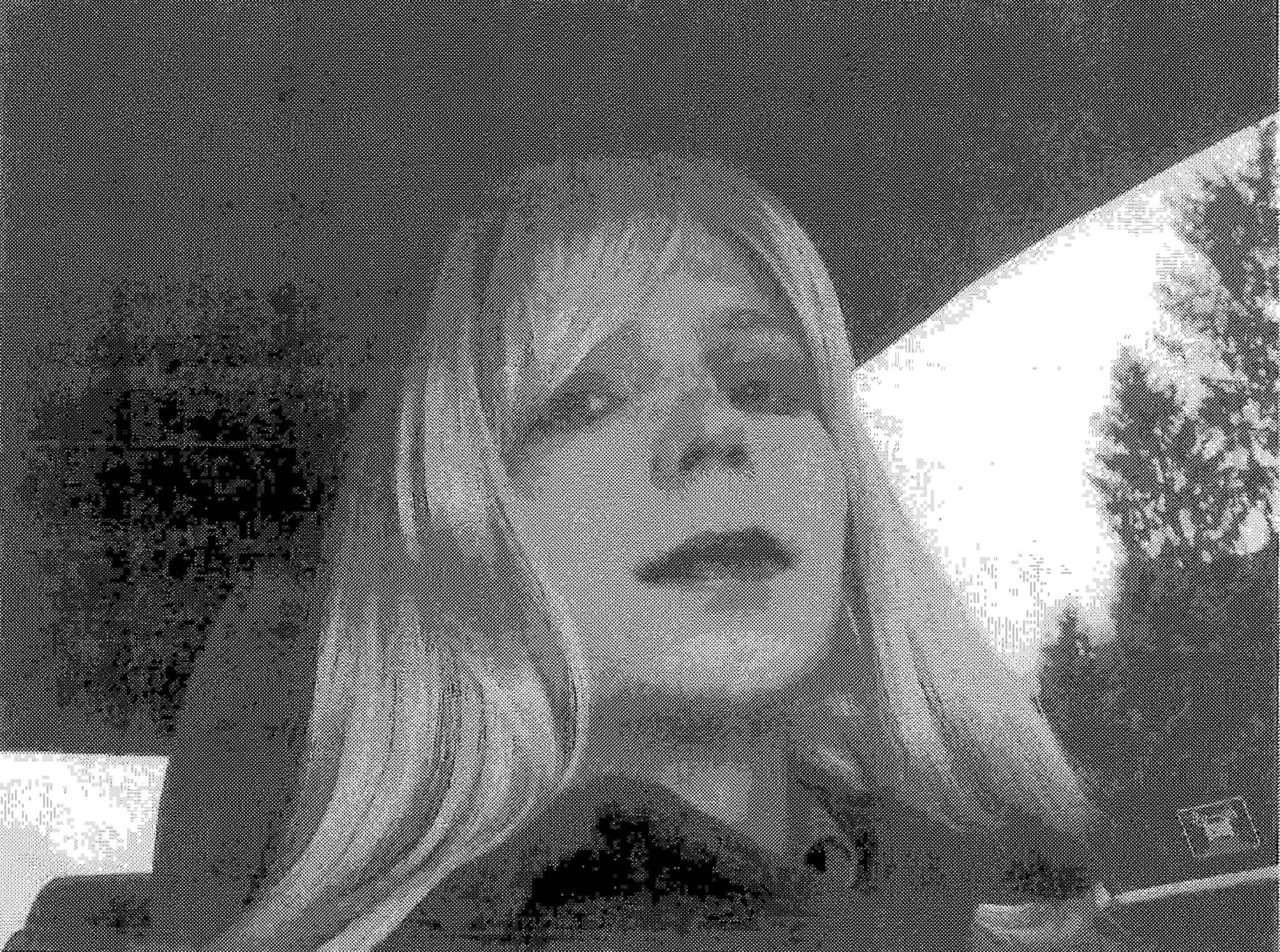 Chelsea Manning, outrora conhecida como Bradley Manning, passou documentos à WikiLeaks
