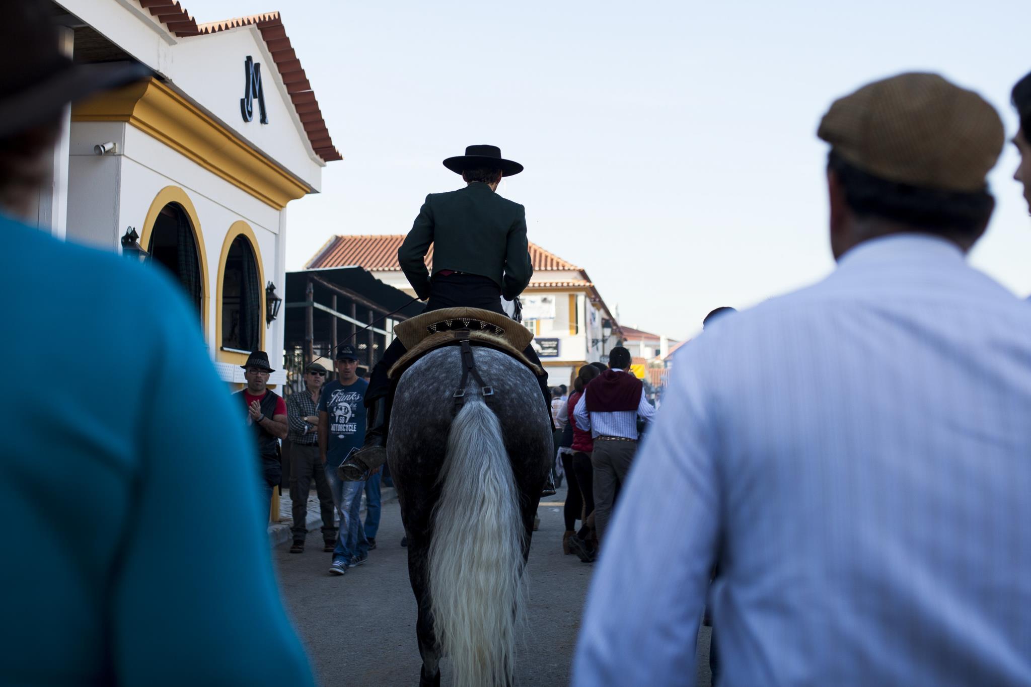 """PÚBLICO - Feira do Cavalo: Junta da Estrela e empresários andam aos """"coices"""""""