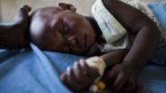 Laboratório do Infarmed vai testar medicamentos da malária para a OMS
