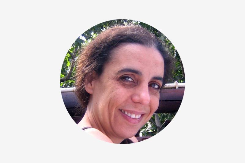 As sugestões de Maria Paula Meneses