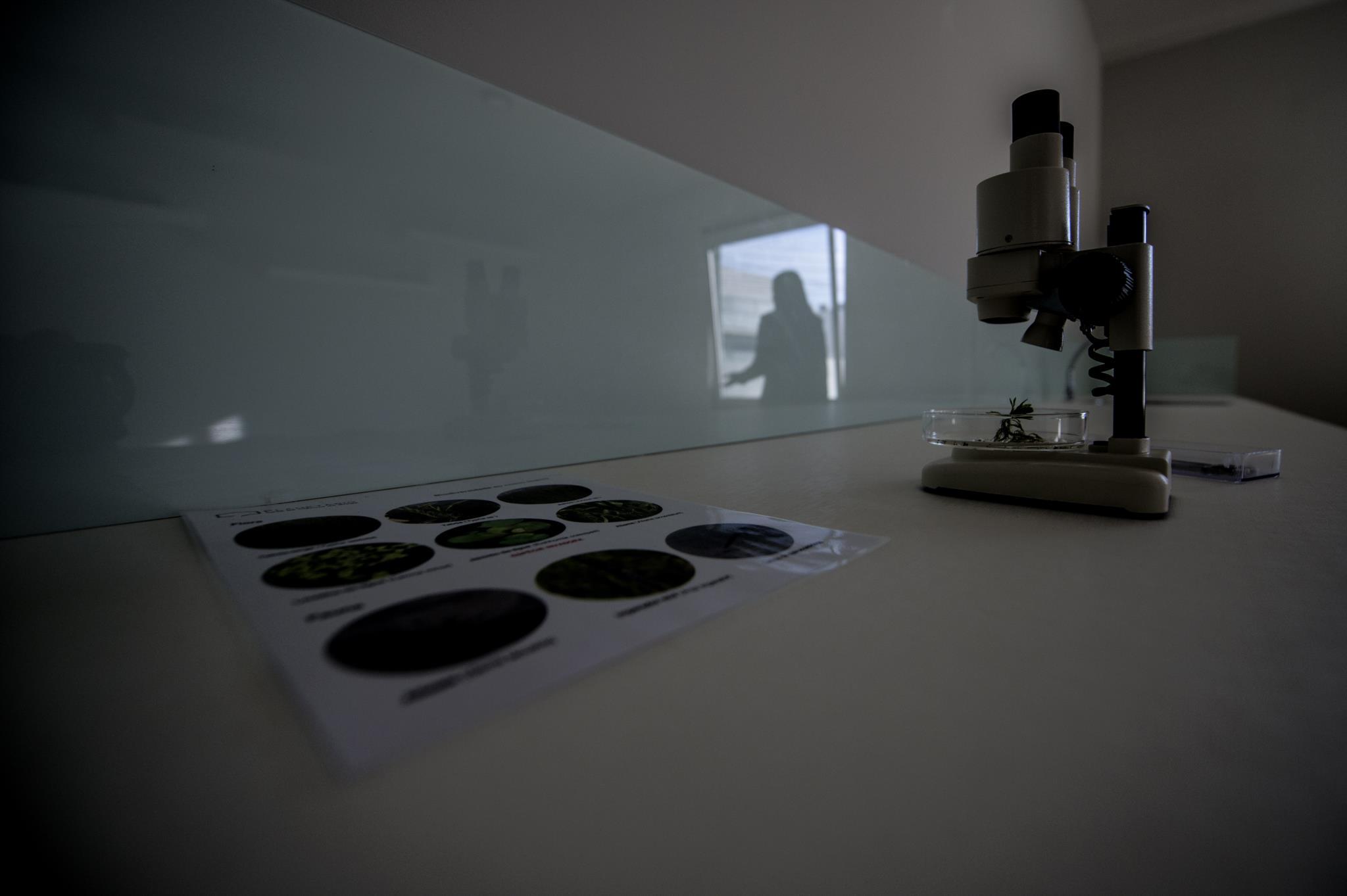 Casa da Ciência de Braga em Gualtar