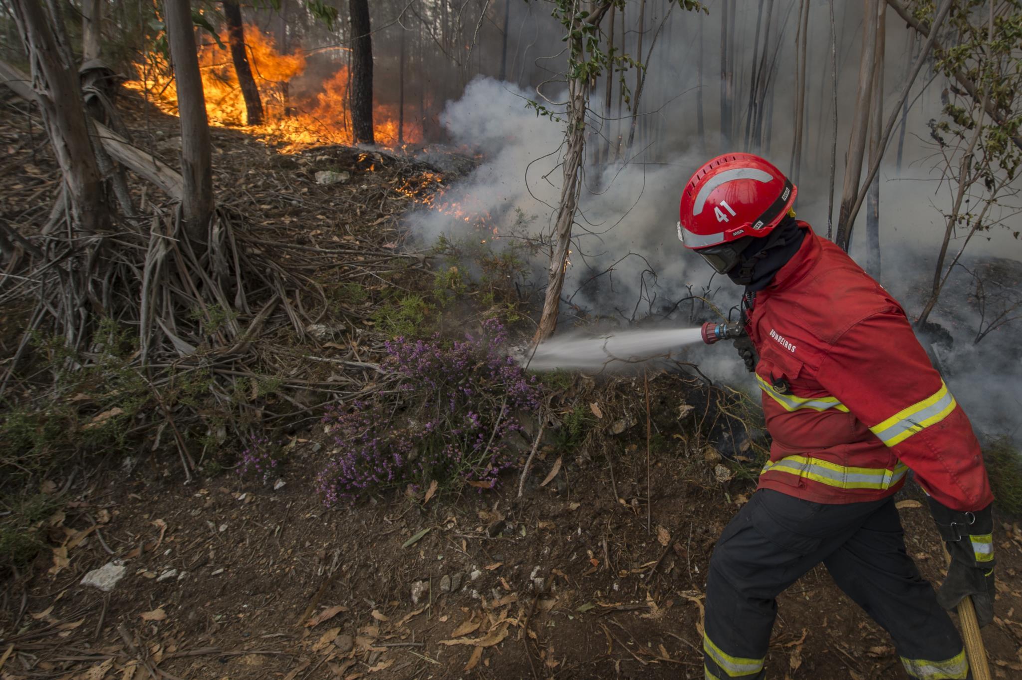 PÚBLICO - PSD e BE questionam MAI sobre polémica no financiamento dos bombeiros