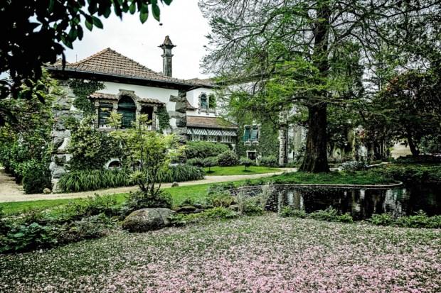 PÚBLICO - A idade de ouro dos vinhos brancos portugueses