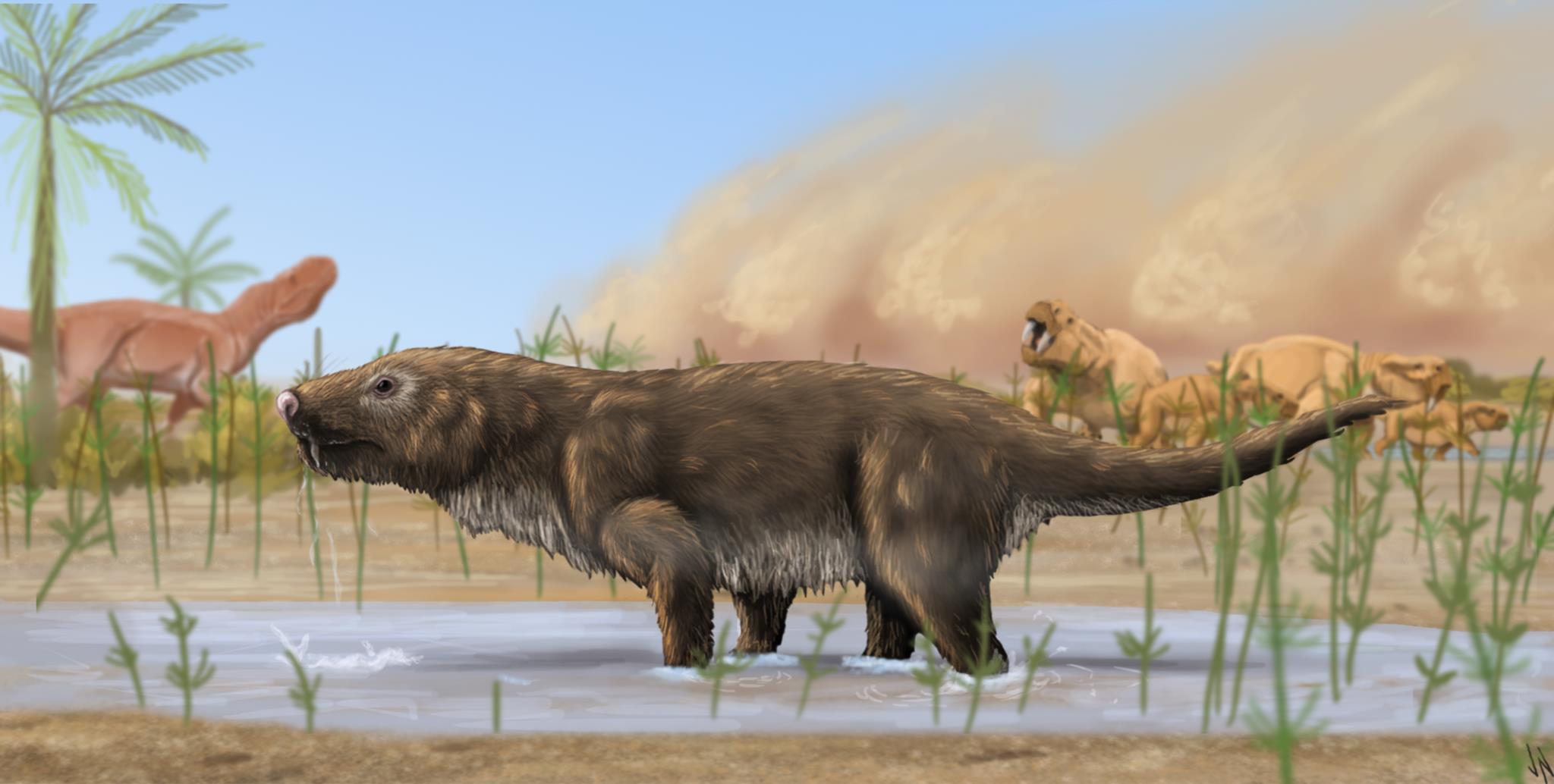 A nova espécie de carnívoro já parecida com os mamíferos