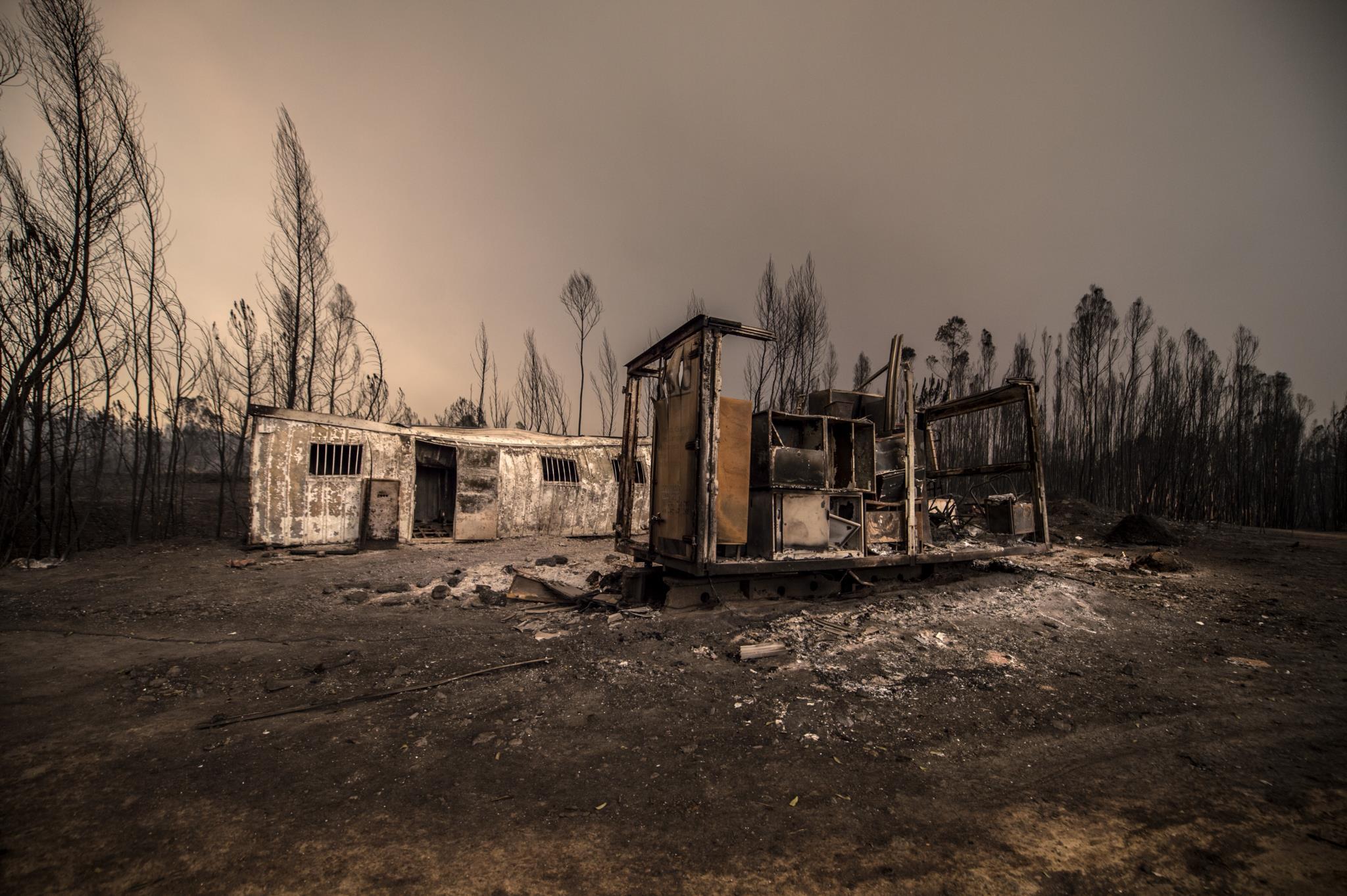 Incêndios podem ter destruído 150 habitações e 26 empresas