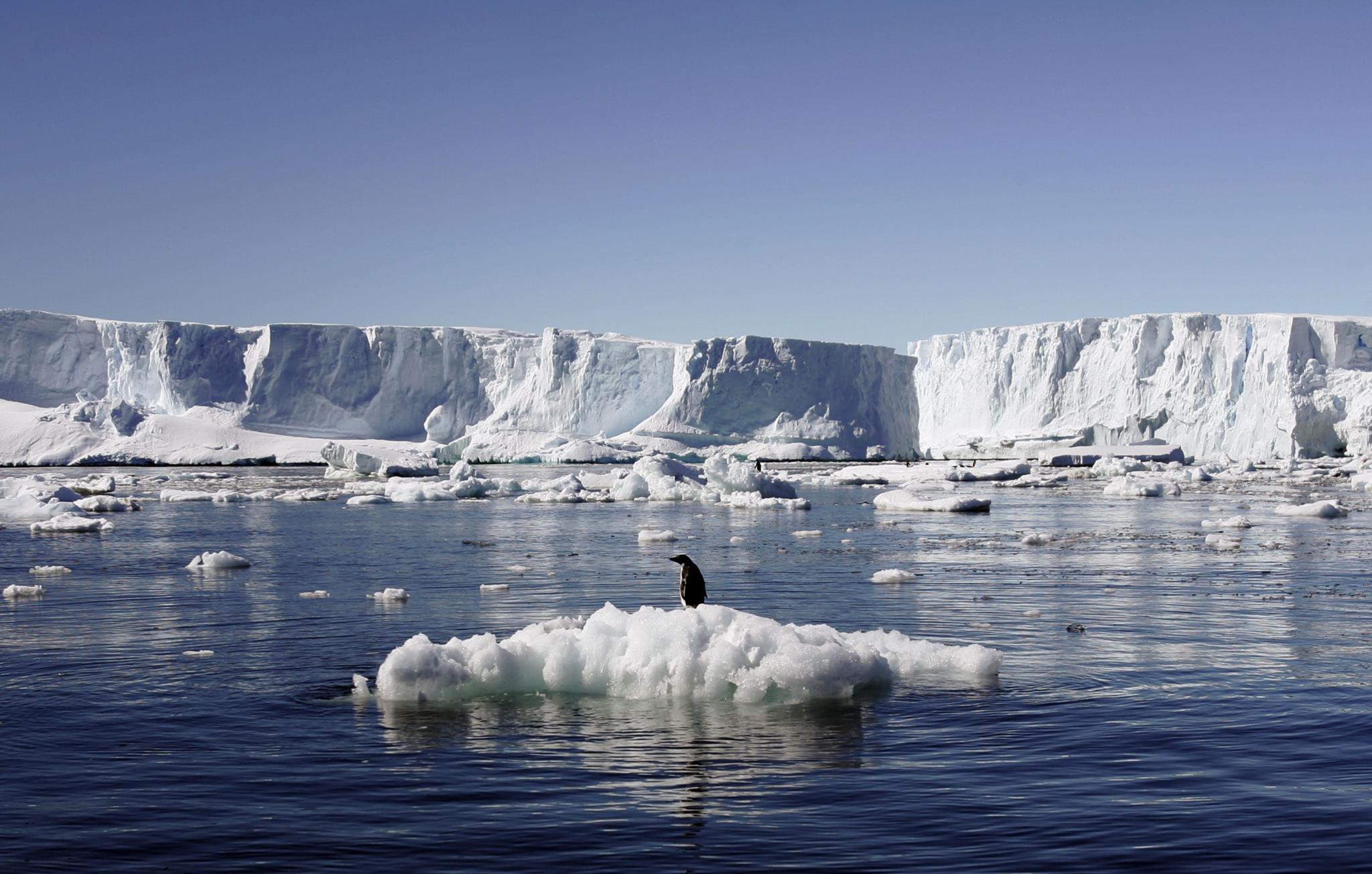 PÚBLICO - O que há nas águas da Antárctida? Medicamentos e cocaína