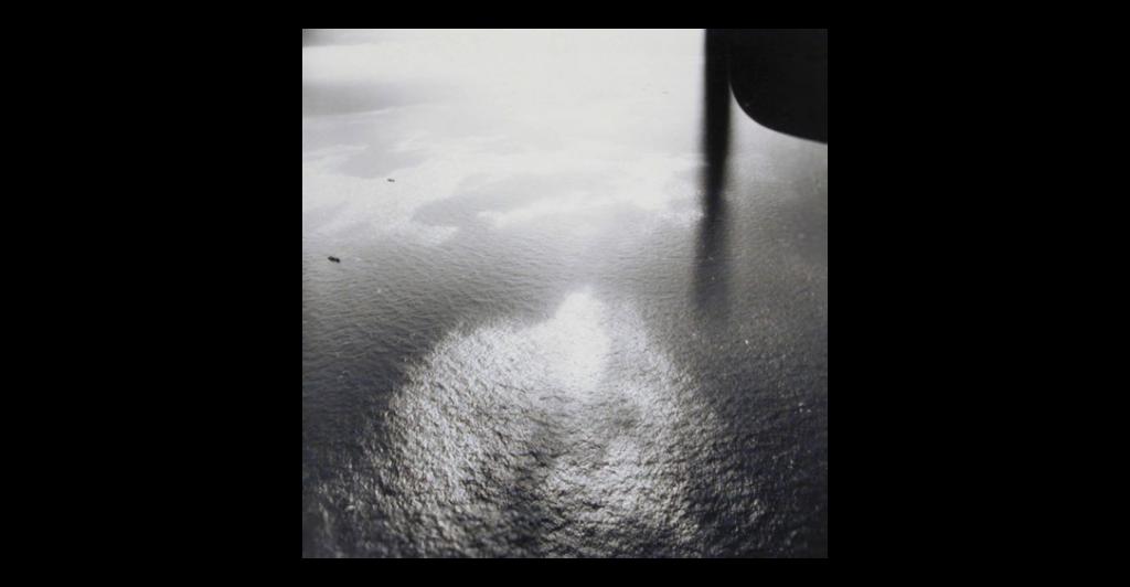 PÚBLICO - Pedimos o mundo num SMS e o museu mandou-nos o oceano