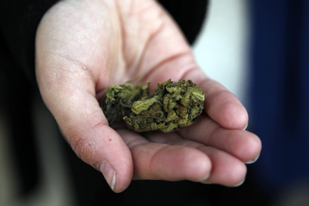 PÚBLICO - No Uruguai já se pode comprar <i>cannabis</i> na farmácia