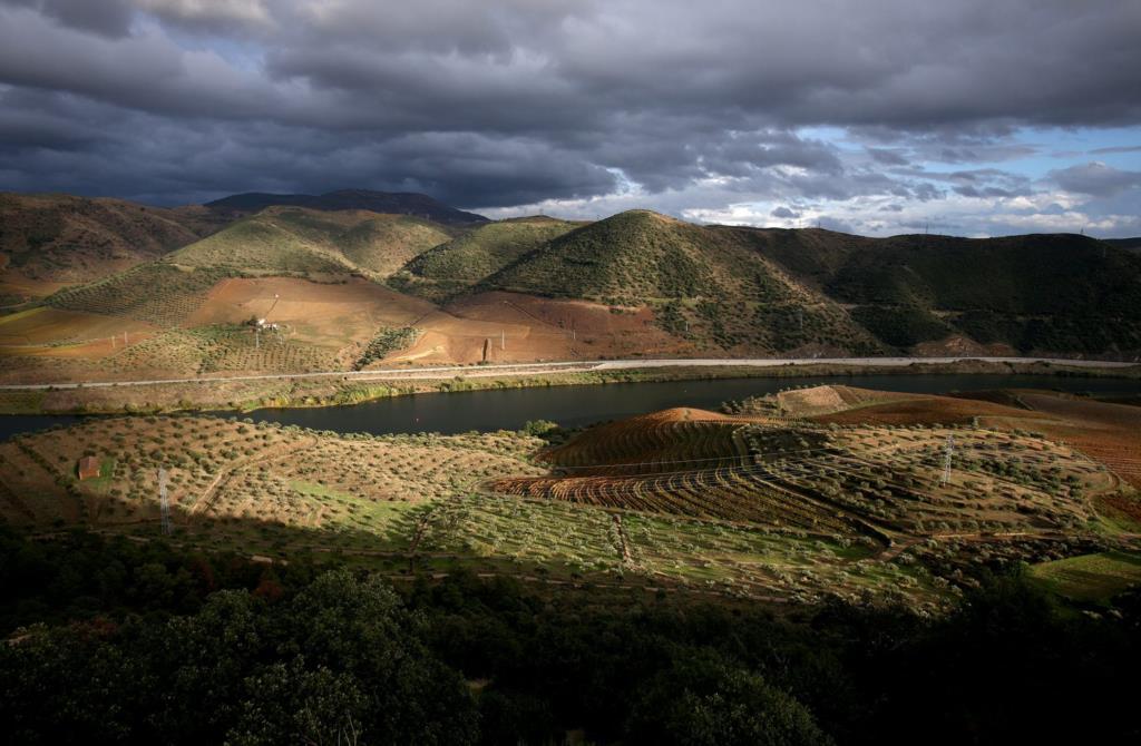 PÚBLICO - CCDRN chumba gasoduto da REN no Património Mundial do Douro