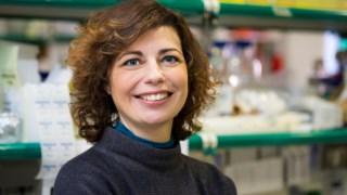 A investigadora Mónica Bettencourt-Dias