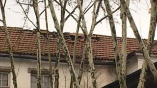 Estado do telhado do Liceu Camões, esta manhã
