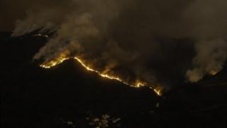 Outras autarquias afectadas pelos incêndios de Outubro também já avançaram com a isenção de IMI para as casas afectadas pelos fogos