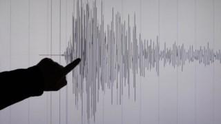 A leitura de um sismógrafo convencional num computador, numa imagem de arquivo. Os avanços da inteligência artificial vão permitir detectar um maior número de abalos