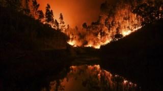 Patrícia de Melo Moreira é a vencedora do prémio de fotojornalismo Estação Imagem 2018 com uma reportagem nos incêndios em Portugal entre Junho e Outubro de 2017