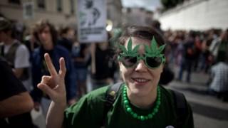 A cannabis é a droga é a mais consumida na Europa Nuno Ferreira Santos