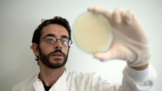 Óscar Pinto é um dos micro-biólogos que compõem a equipa do Melus Paulo Pimenta