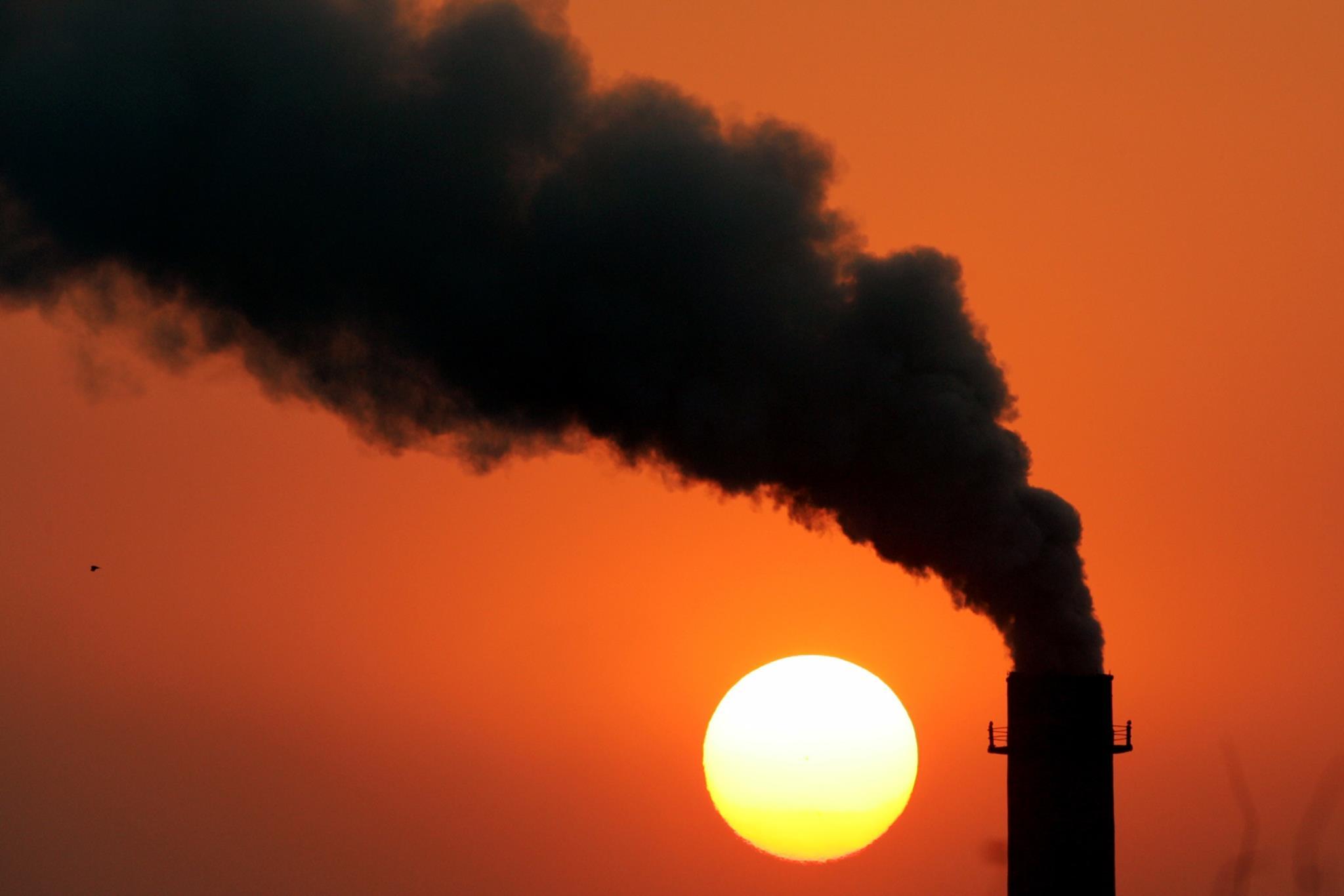 Com um planeta mais quente 1,5 graus, a maioria das espécies ainda sobrevive