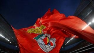 O Benfica é campeão nacional de juniores