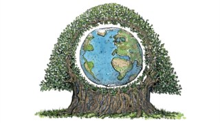 Terra, Desenho