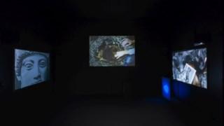 Parte do projecto de Mariana Caló e Francisco Queimadela na exposição na Galeria Municipal do Porto