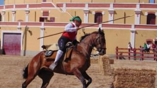 Assento de caça, cavalo, garanhão, freio, equitação