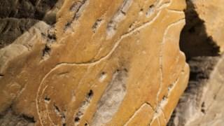 Geologia, Afloramento