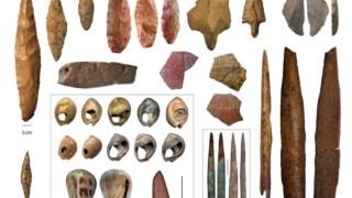 Evolução Humana, Primeiras Migrações Humanas, Evolução