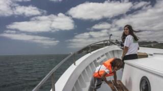 Passeios de barco, água