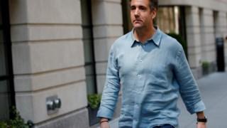 Michael Cohen, Estados Unidos, Investigador Especial, Advogado