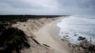 O cordão dunar a sul da praia da Cova-Gala, na Figueira da Foz, tem sido destruído pelo mar nos últimos anos