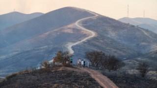 Arderam mais de 27 mil hectares no incêndio de Monchique