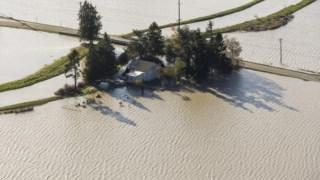 Em 2015, o <i>El Niño</i> provocou inundações nos EUA