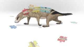 Ilustração do <i>Thrinaxodon</i> (primo dos mamíferos) , que ainda não tinha todas as regiões da coluna que os mamíferos têm hoje