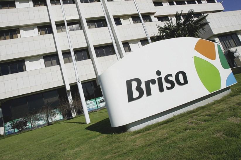 Resultado de imagem para Tribunal condena Brisa a pagar 258 mil euros a camionista que caiu de ponte na A1