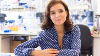 A investigadora Maria Mota
