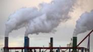 Banco Mundial destina 176 mil milhões de euros ao combate às alterações climáticas