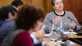 Ana Paula Vitorino foi ouvida em sede de comissão parlamentar