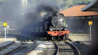 O comboio histórico vai fazer, este ano, metade das viagens