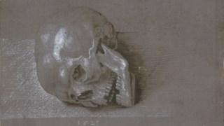Dürer fez um estudo à parte para a caveira