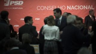 Rodrigo Gonçalves é um dos conselheiros nacionais do PSD