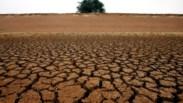 Alerta global: a Terra não aguenta mais uso e abuso dos solos