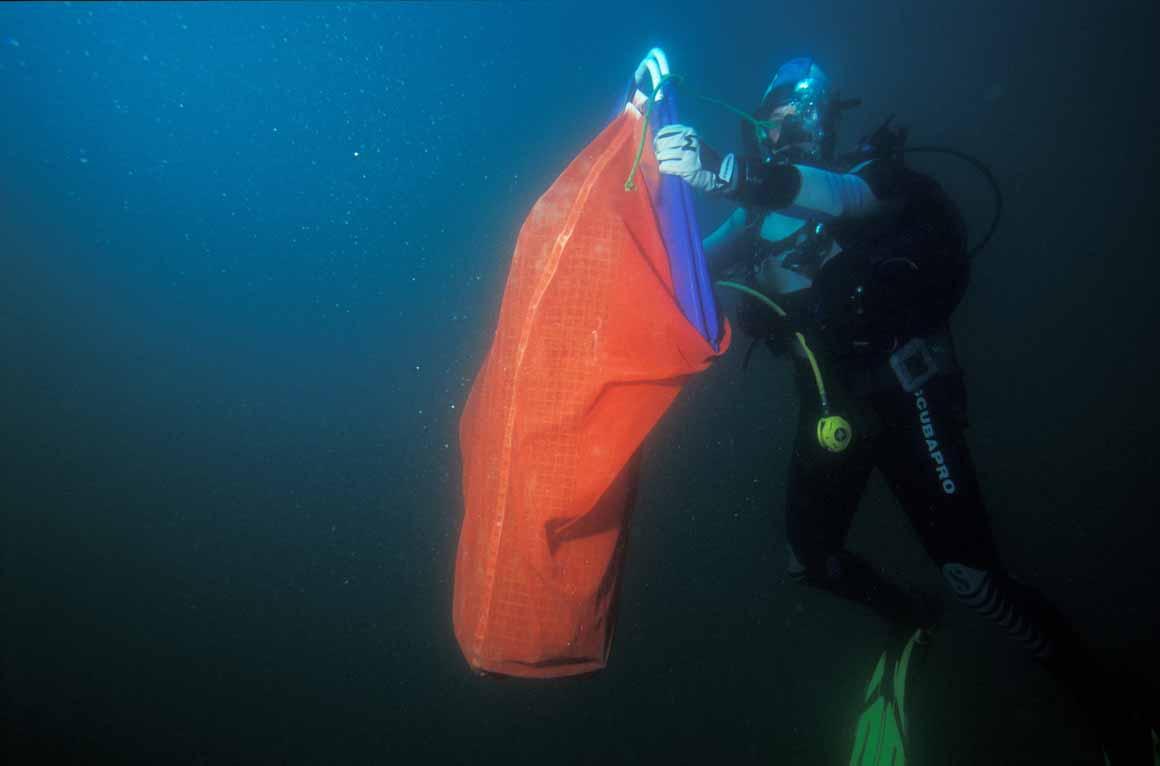 Mergulhador recolhe estrutura destinada a atrair juvenis de peixes e estudar o papel de berçário do parque