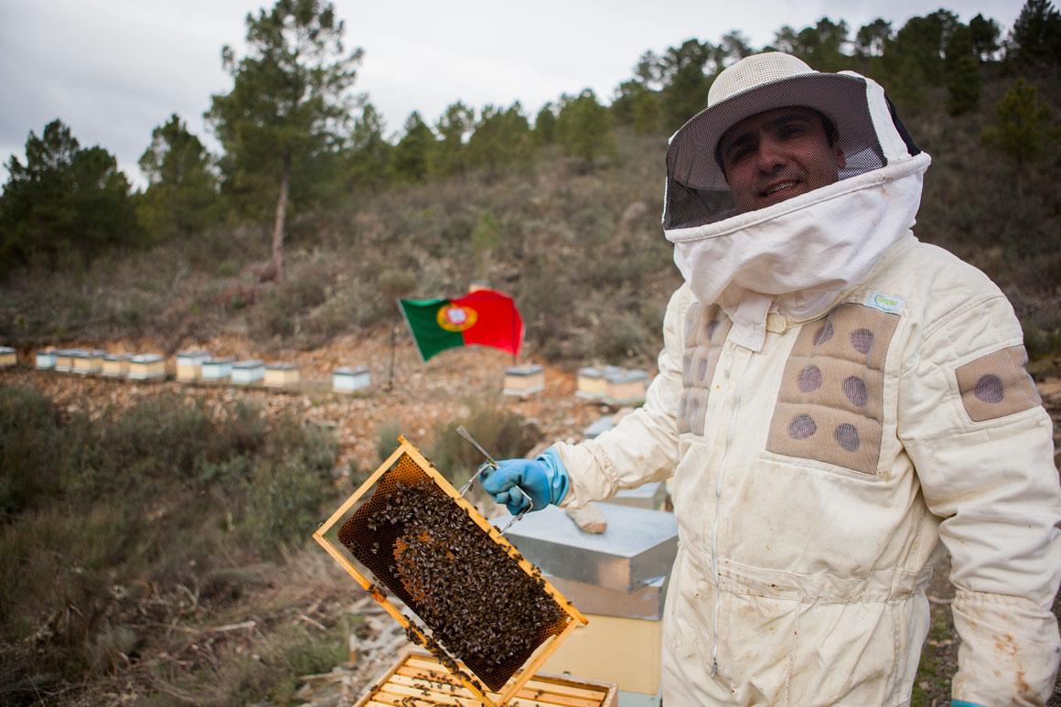Carlos Rocha, 35 anos, apicultor no Mogadouro