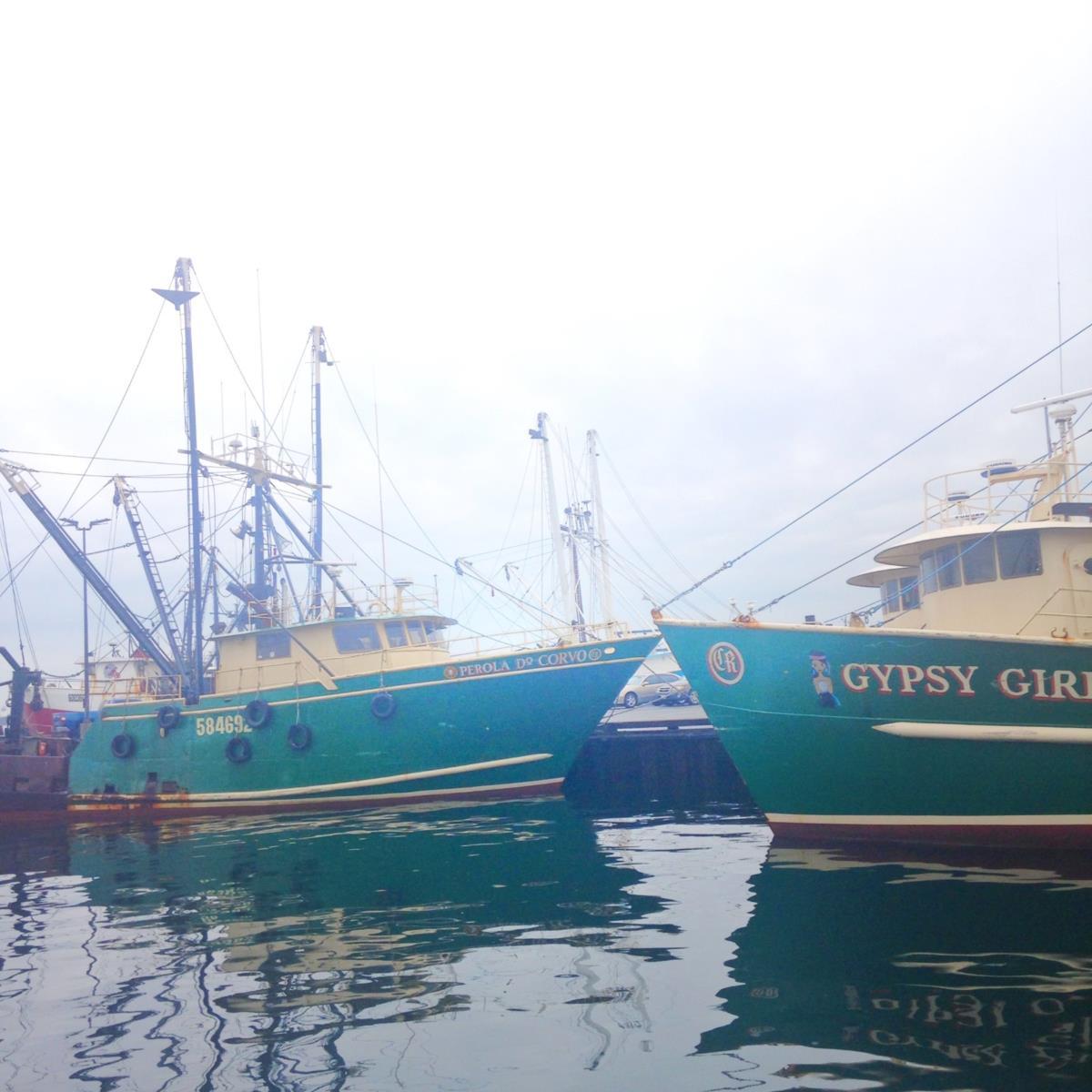 A mão-de-obra, experiente na pesca, sobretudo à baleia, vinha da Escócia, Gales, Irlanda, Açores, Madeira, Cabo Verde