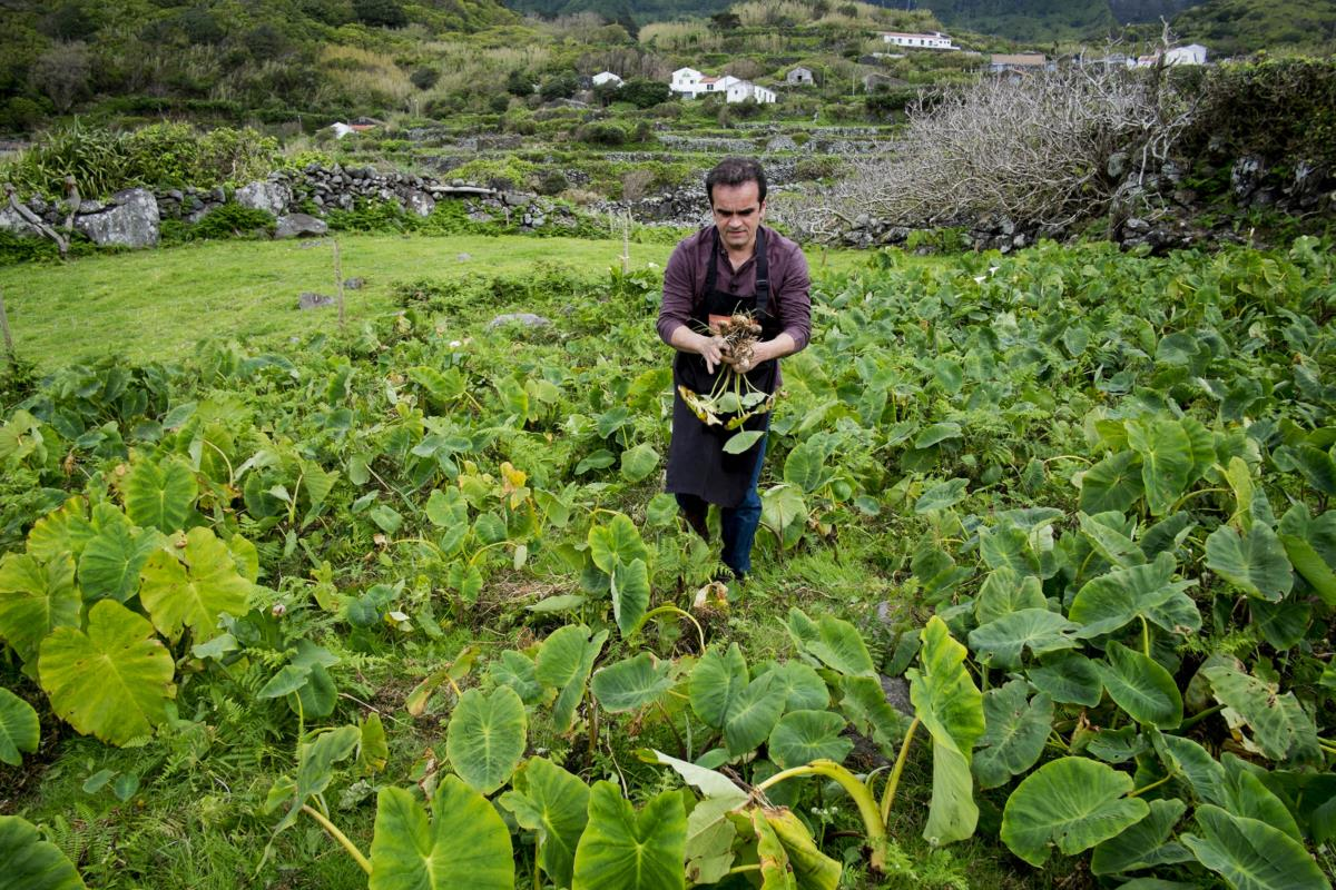José Corvelo na sua horta do restaurante Pôr do Sol