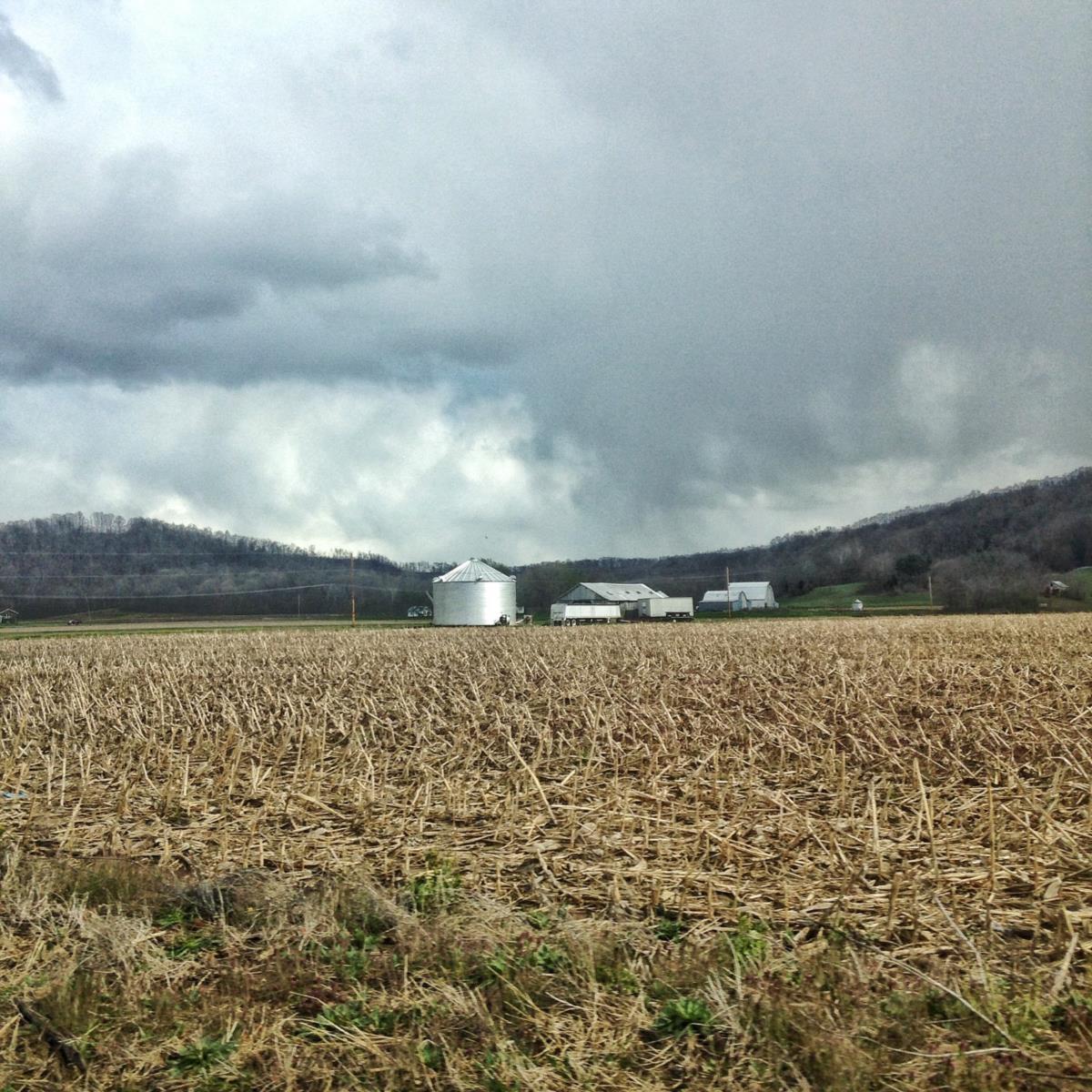 Atravessar o Ohio é ver o rasto das ceifeiras industriais em vastos campos de soja, aveia, milho e uma intrincada rede de estradas