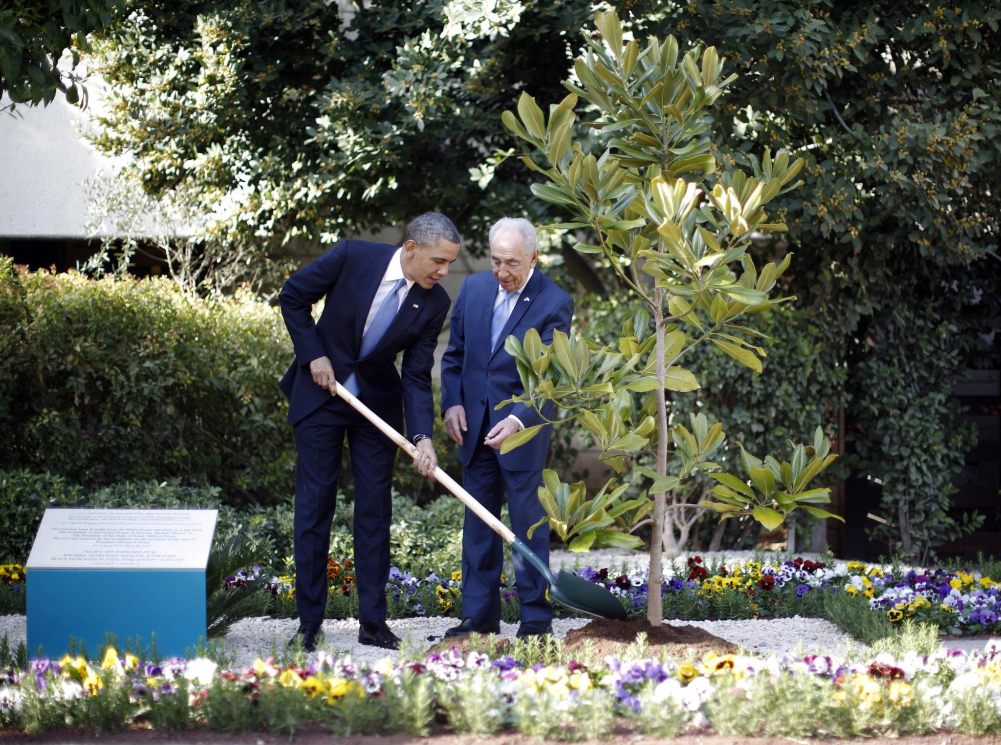 Obama planta uma semente de magnólia em nome da Casa Branca, na residência do Presidente israelita Shimon Peres, em Jerusalém, 2013