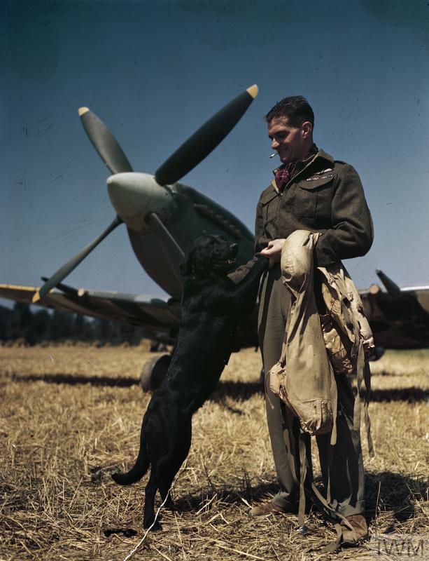 O piloto da Força Aérea britânica James 'Johnnie' Johnson e a sua cadela de estimação Sally, na Normandia em Julho de 1944